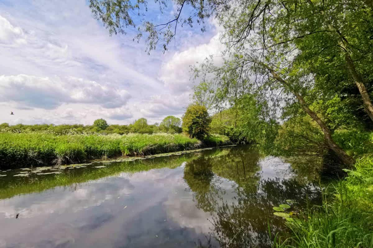 Bolehall Manor Club Fishing